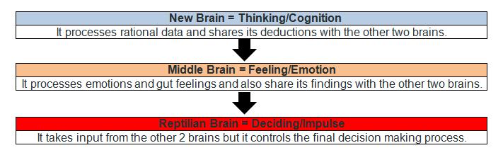 Neuro-SEO - The Three Brains
