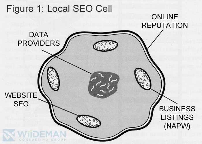 Diagram of Local SEO as Represented by a Cell