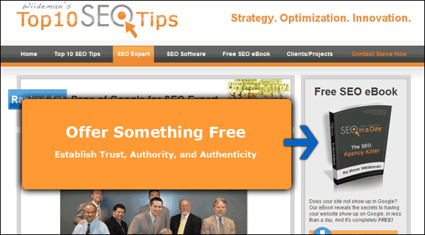 Screenshot Showing My One Page with a Free SEO eBook Download