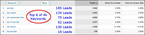 Screenshot Showing Leads and Visits From Keywords
