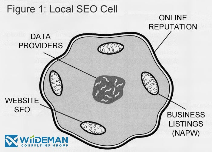 Local SEO Strategy - Much Like a Cell and Its Parts